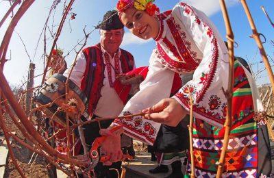 14 февруари: Честваме Трифон Зарезан или св.Трифон покровител на лозарите, виното и кръчмарите